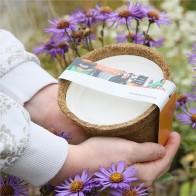 Anzuchtsets (Blumen)